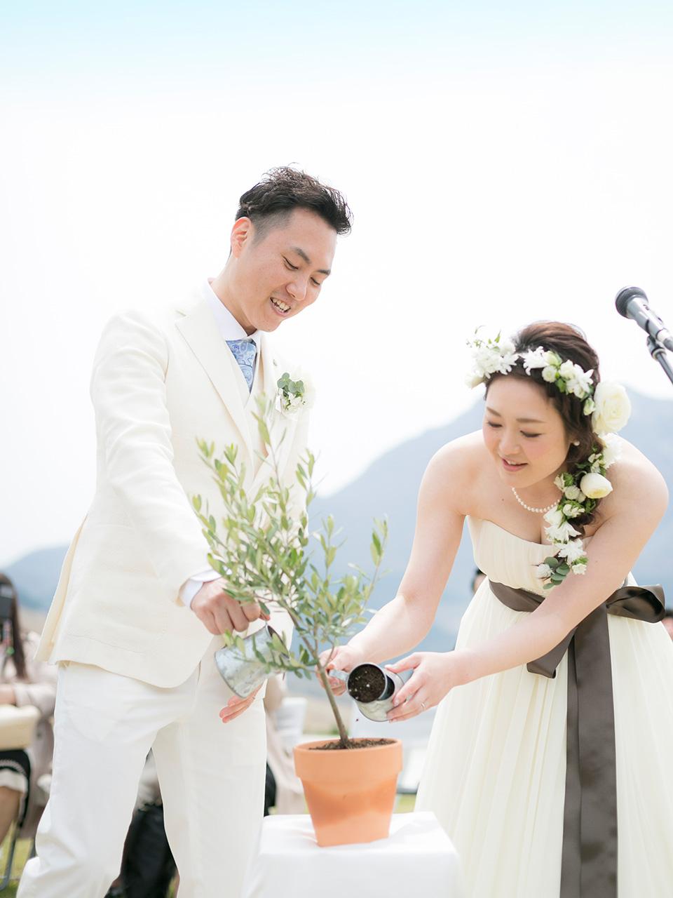結婚記念植樹